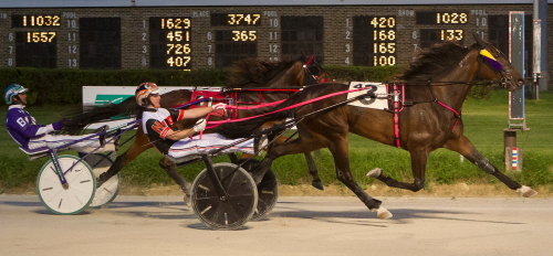 Bee Cee (Kyle Husted) was a Violet filly trotting champion last summer as a two-year-old for trainer Steve Searle (Four Footed Fotos)
