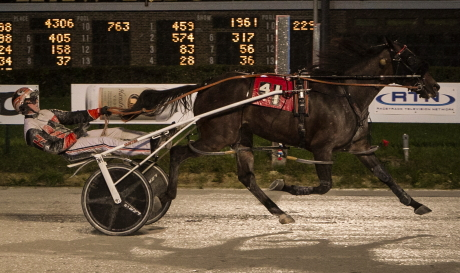 The 2019 Illinois Harness Two-Year-Old Filly of the Year Fox Valley Exploit (Kyle Husted) makes his initial start as a sophomore in tonight's opening round of the Plum Peach stake series. (Four Footed Fotos)