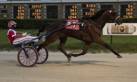 Fox Valley Quest (Casey Leonard), another starter in race eleven tonight, has a gaudy lifetime record of being first or second in 19 of his 20 lifetime starts for trainer Tom Simmons, (Four Footed Fotos)