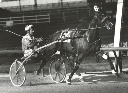 Hothead (Mike Borys) is shown here winning one of his victories at Sportsman's Park when he was honored as the 1985 Illinois Harness Horse of the Year. (Pete Luongo Photo)
