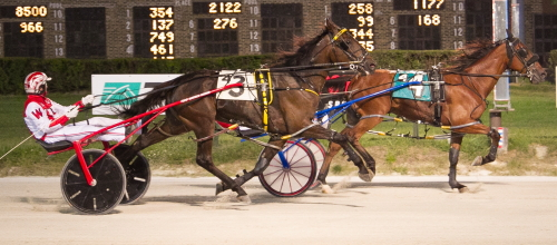 Ideal Big Guy (Inside, Casey Leonard) notched his maiden victory last week by holding off Frontier Charley (Todd Warren). The pair will tangle again in tonight's freshmen colt and gelding pacing championship. (Four Footed Photos)