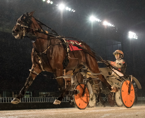 The Tom Simmons Stable's Kelly D, shown here winning at Hawthorne with Kyle Husted, makes his 2020 debut in Friday's fifth race co-feature for Illinois owner and breeder Larry Breed. (Four Footed Fotos)