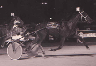 Million Dollar Bye became an Illinois bred trotting millionaire for the Joe Anderson Stable in the first decade of this century. (REB Photo)