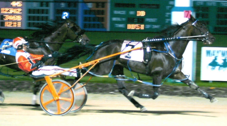 Taser Gun with his regular driver Andy Miller is shown here winning the 2004 Associates Stake at Maywood Park as a nine-year-old. (R E B Photo)