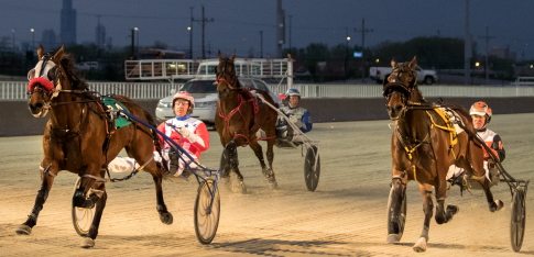 Trashytonguetalker (left with Casey Leonard), steps up to the Open II ranks tonight for trainer Terry Leonard. (Four Footed Fotos)