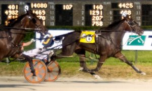 Incredible Tillie series winner Razzleme Dazzleme was one of five first place finishers Friday for driver Kyle Husted. (Four Footed Photo)