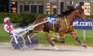 Whiskeronkittens (Todd Warren), only a 3-year-old,, was assigned the outside post in tonight's Filly and Mare Open Pace. (Four Footed Photo)