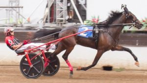 Springfield champion Anna's Lucky Star (Kyle Wilfong) set a track record at Hawthorne last week for a 2-year-old trotting filly. (Four Footed Photo)