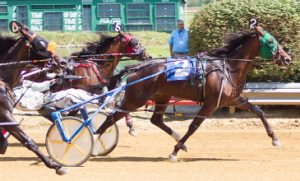Dee Tumbleweed (Cornelius Cavett) powered past in time for an upset win the 2-year-old Director's Award Pace. )Four Footed Photo)