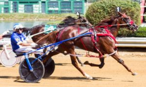 Driver Dale Hiteman gave LK's Nancy Lee a winning trip in the Time Dancer 3-year-old filly pace. (Four Footed Photo).