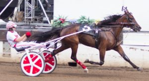 Springfield 3-year-old filly trot champion Praise Singer (Ridge Warren) goes postward in Saturday's Windy Skeeter stake at Du Quoin. (Four Footed Photo)