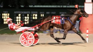 Royale Rose (Matt Kruger) was the 2016 Dudley Hanover stake champion. (R.E.B. Photo)