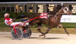 Slzburgerslzburger (Todd Warren) was a surprise winner of last night's second Cardinal Pace elimination for 2-year-old males. (Four Footed Photo)