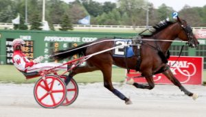 Herman Wheeler's Fox Valley Qatar is on the sidelines this year. (Balmoral Park Photo)