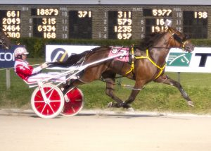 Sporty Redhot, a five-time winner as a freshman, has his sights set on the upcoming Bob Larry Late Closer Series at Hawthorne. (Four Footed Photo)