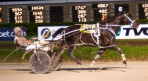 Seeyouatthefinish and driver Kyle Husted team up again in Saturday's Filly and Mare Open Pace (Four Footed Photo)