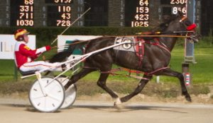 Sullivan (Mike Brink) picked-up his maiden win last night wining a division of the Mike Paradise Late Closer Series (Four Footed Photo)