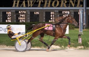 Peter Karras' ICF mare Fox Valley Charm was one pf three winning drives last night for Mike Oosting. (Four Footed Photo).