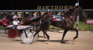 Fox Valley Jolene (No. 10) surprised at 45-1 odds with driver Matt Avenatti in the first Plum Peachy division. (Four Footed Photo)