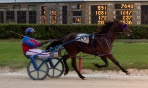 Last week's initial 2-year-old race for pacing colts went to Charles Arthur's G T Gunslinger in a time of 1:55.1. (For Footed Photo).