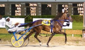 The 2016 Illinois Harness Horse of the Year Prince Sage (Freddie Patton Jr.) makes her sophomore debut in a first leg division of the Plum Peach stake series tonight. (Four Footed Photo)