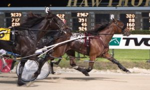 Royale Big Guy held off a fast closing Captain Rhett in last night's first Robert F. Carey stake series. (Four Footed Photo)