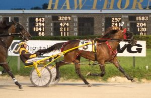 The Mike Brink Stable's A Real Doozie (Mike Oosting) shows her winning Plum Peachy stake series form. (Four Footed Photo)