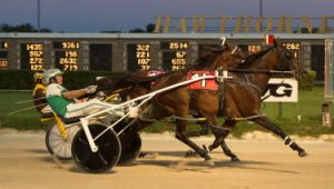 Dandy Dune (No. 1) was one of two winning drives by Tim Curtin in last weekend's Cardinal freshman pace eliminations. (Four Footed Photo)