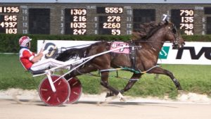 "The Terry Leonard Stable's Fox Valley Gemini (Casey Leonard) will open as the betting favorite in tonight""s $29,800 Cardinal Pace Final for ICF 2-year-old colts and geldings. (Four Footed Photo),"