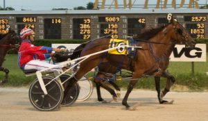 Gary Rath's Shelby Rae has shown she could be a force in the ICF freshman filly pacing division. (Four Footed Photo).