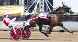 The Tom Simmons Stable's Aimo Hanover (Casey Leonard) paced a sizzling 1:49 mile Tuesday. (Four Footed Photo)