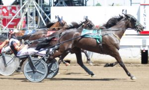 Ants Iner Pants' (Kyle Husted) win in the Aged Mare Trot Championship was one of five first place finishes at Springfield for trainer Steve Searle. (Four Footed Photo).