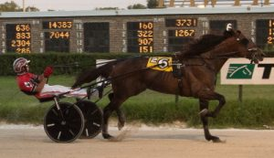 Banker Volo (Kyle Wilfong) returns tonight to Hawthorne where he won the July 30 Open Trot. (Four footed Photo)
