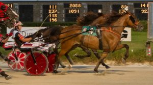 Big Expense (No. 4, Kyle Husted) overtook the heavy favorite Banker Volo in last week's Open Trot. (Four Footed Photo)