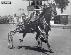 National Hall of Fame trotter Hall Speedy Scot (Ralph Baldwin) won the 1963 Hambletonian when it was raced at Du Quoin. (USTA Photo)