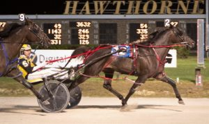 Allbeastnobeauty (Bobby Smolin) looks for a repeat Fall Review victory Saturday. (Four Footed Photo)