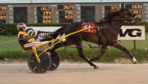 Backstreet Lawyer (Mike Oosting) goes postward in Saturday's Fall Review opener. (Four Footed Photo).