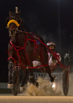 Best Man Hanover (Todd Warren) shows his winning form in Hawthorne's January 6th Open Race. The Perry Smith trainee looks to repeat in tonight's co-feature. (Four Footed Photo).