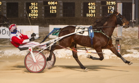 Mobile Big John, shown here winning earlier for driver Casey Leonard, is a two-time Cicero Claiming Series victor at the meet. He'll race out of the Payton Ode barn in tonight's $20,000 eighth race championship. (Four Footed Photo).