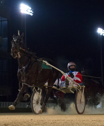 Rocking Katie (Casey Leonard), one of the favorites in tonight's filly and mare Open Pace, was all alone at the finish wire in her last Hawthorne start. (Four Footed Photo).