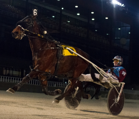 It was all Aimo Hanover (Sam Widger) in the Sunday's co-featured Open III Pace. The Tom Simmons trained gelding sped to a 1:51.4 front-stepping victory. (Four Footed Photo)