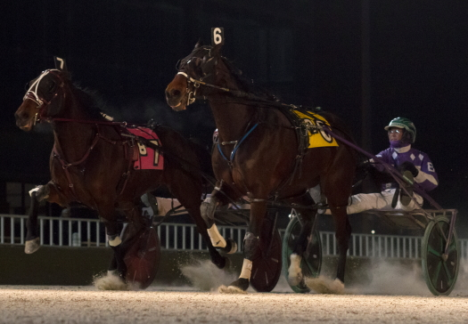 Fox Valley Nemitz (No. 6 inside Brandon Bates) and Firedrake (No. 7, Kyle Wilfong), were the one-two finishers in last week's Open Pace (Four Footed Photo)