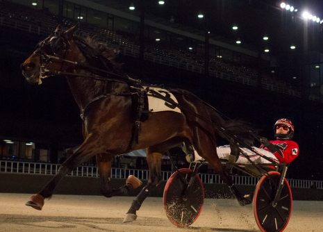 The Nelson Willis trained Anna's Lucky Star (Kyle Wilfong) is shown here capturing an Open III Hawthorne trot, one of her 16 victories in just 25 lifetime starts, (Four Footed Fotos)