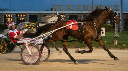 The Tom Simmons Stable's Beach Shootingstar captured last night's first division of the Bob Larry Series with Casey Leonard at his lines. It was one of five winners for Casey on the Saturday card. (Four Footed Photo)