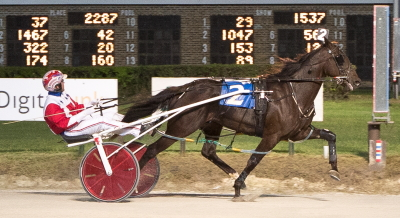 Last year's Illinois Harness Horse of the Year Fox Valley Gemini (Casey Leonard) makes his 3-year-old debut at Hawthorne Saturday night. (Four Footed Fotos)