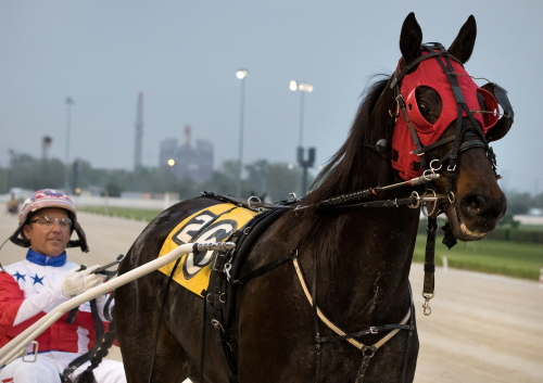 Unbeaten Fox Valley Gemini goes for his 12th consecutive victory with driver Casey Leonard in the third division of the Robert F. Carey Memorial stake series tonight. (Four Footed Fotos)