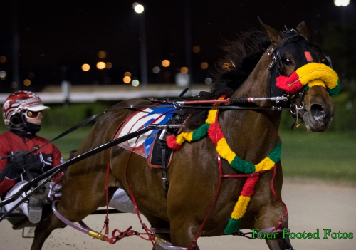 The Joel Smith Stable's Fox Valley Sinful was all dressed up and on the go when he powered past to win s series le fog the Mike Paradise with driver Kyle Wilfong at 70-1 odds. (Four Footed Fotos)