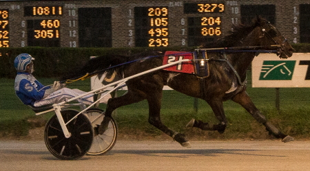 The Roshan Trigg Stable's Lou's Silver Star goes for another victory in Friday's Bea Farber Late Closer Series with driver Tyler Shehan. (Four Footed Photo)