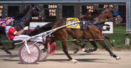The Kim Roth trained state-bred pacer Sagebrush Shocker (Casey Leonard) goes after his second victory in tonight's Bob Larry Series. (Four Footed Fotos)