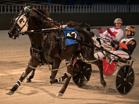 Summer Party (Kyle Husted), from the barn of Matt Mac Kenzie) has her sights set on this weekend's $10,000 Cicero Claiming Series Final for pacing mares after her second leg triumph. (Four Footed Fotos)